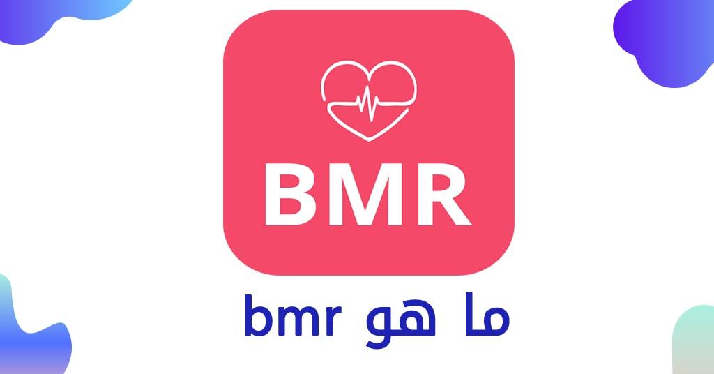 ما هو bmr